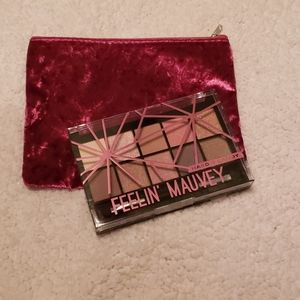 Hard Candy Eyeshadow and a Velvet Cosmetic Bag